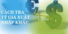 Tỷ giá tính thuế trong Xuất nhập khẩu tra cứu thế nào?